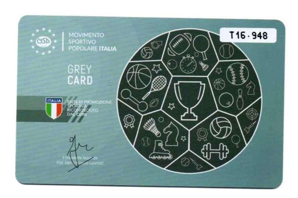 Grey Card MSP CALABRIA